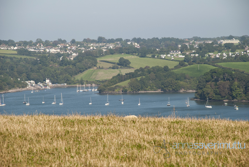 The Dart Estuary, Devon