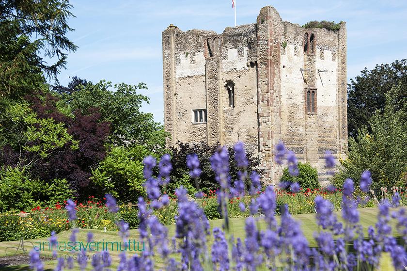 Guildford Castle & Grounds